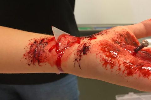 Bloed1 1170 x 600